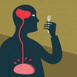 Pourquoi un régime hyperprotéiné coupe-t-il la faim ?