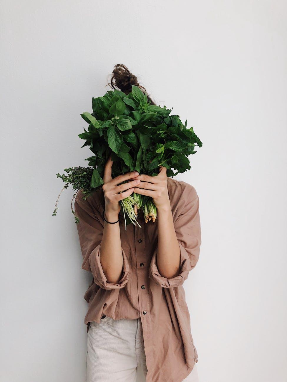 Le Mythe Végétarien